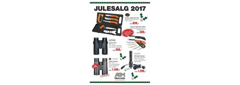 JULESALG 2017